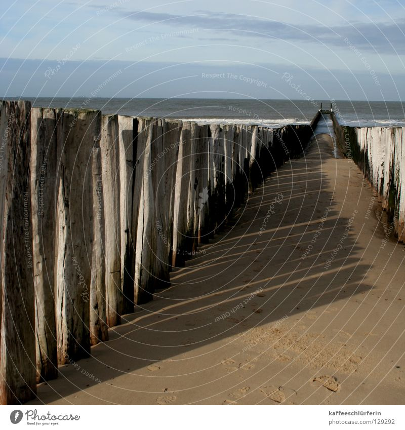 Ocean Beach Autumn Sand Waves Coast Protection Netherlands High tide Low tide Break water Protective function