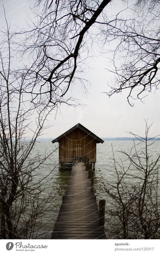My home is my castle Lake Ammer Bavaria Winter Tree Footbridge House (Residential Structure) Horizon eching Water Twig Hut