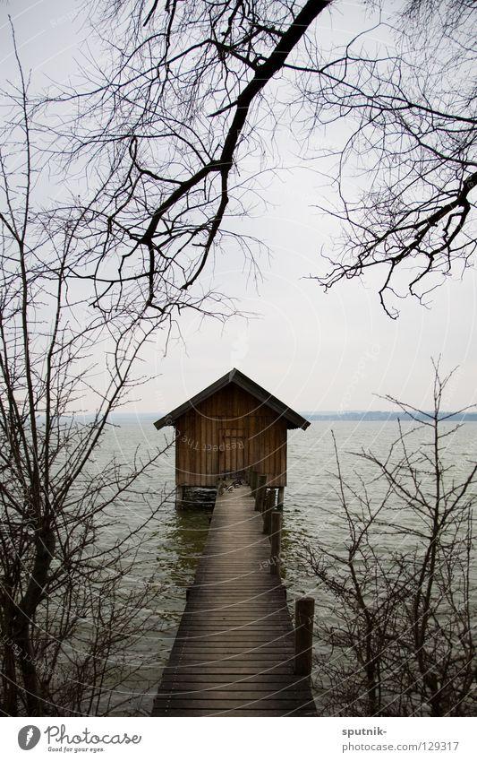 Water Tree Winter House (Residential Structure) Lake Horizon Hut Footbridge Bavaria Twig Lake Ammer