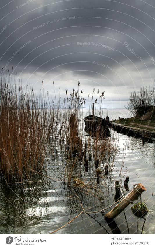 Water Ocean Calm Clouds Loneliness Dark Grass Wood Rain Watercraft Bright Waves Coast Crazy Island Idyll