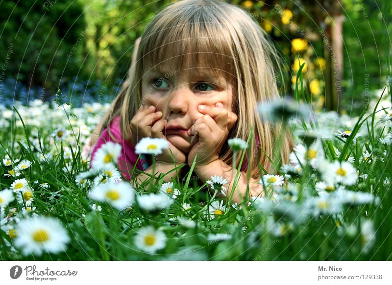 Child Hand Girl Beautiful White Green Face Yellow Relaxation Meadow Garden Think Contentment Blonde Pink Lawn