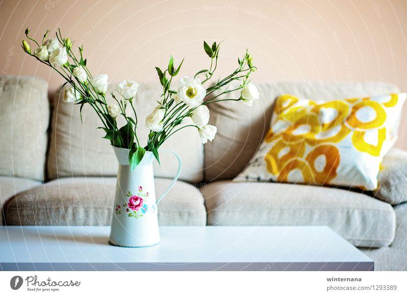 colour at home Flat (apartment) Interior design Decoration Sofa Table Living room Summer Rose Desert Metal Elegant Fresh Peace Serene Contentment Colour photo