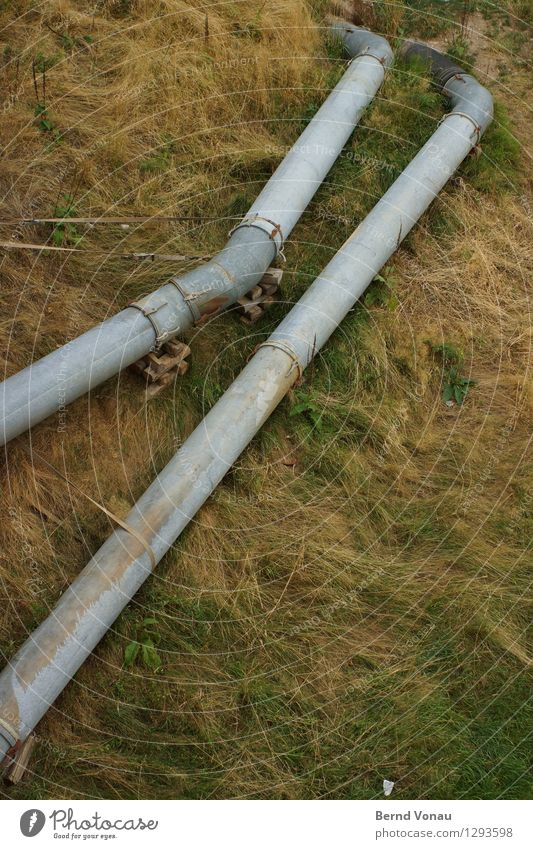 catenary wire Grass Gloomy Transmission lines Pipe Water Dispose of In pairs Environment Metal Gray Brown Environmental pollution Open Detour Breach