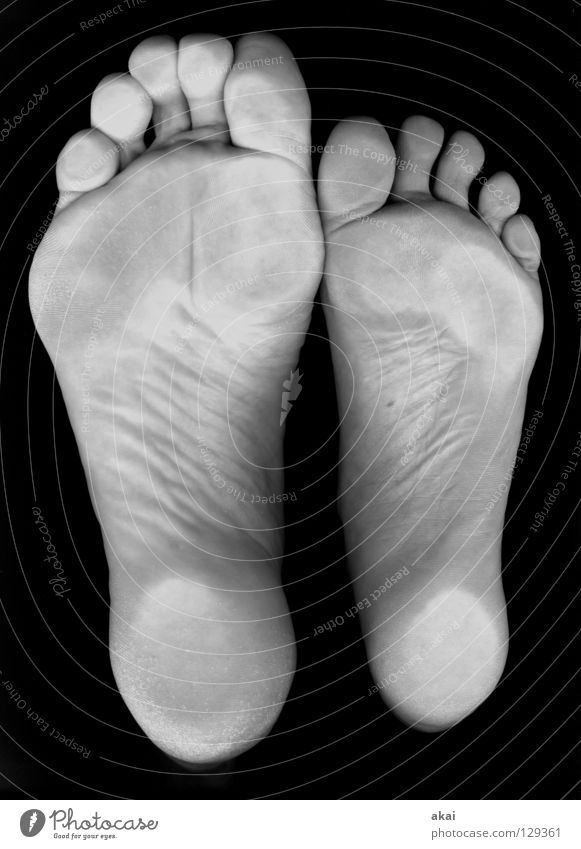 46-37 Graceful Toes Footprint Doormat Ball of the foot Water wings Joy Black & white photo self froggy akai Feet size37 size46 square latches Scan rist