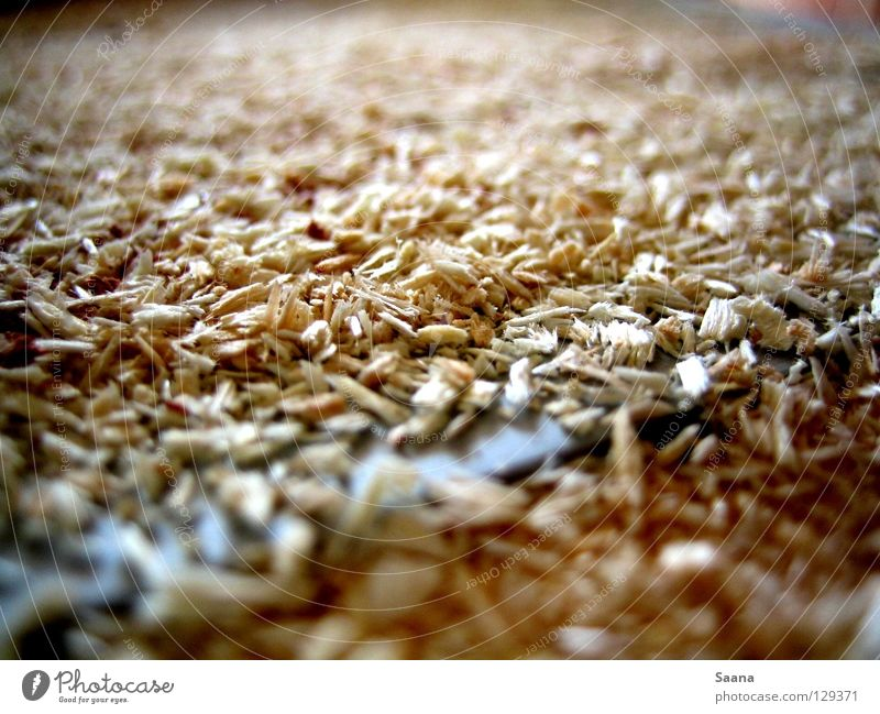 Where there's planing, there's shavings. Saw Saw mill Wood Construction site Craft (trade) Industry planing mill Rasp sawdust construction waste grit