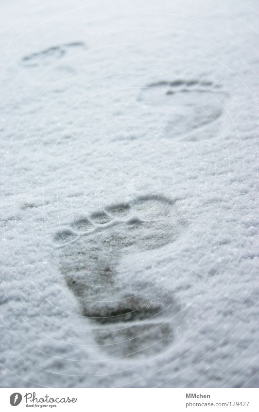 White Winter Loneliness Cold Snow Footwear Hiking Poverty Walking Tracks Transience Forwards 5 Freeze Footprint Toes