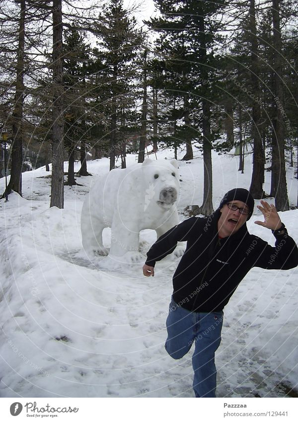 bear hunting Polar Bear Panic Switzerland Wilderness Winter Hunting Escape Fear Snow Frightening Going snow sculpture Tobias Running
