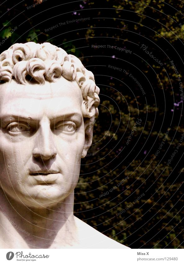 Head Stone Park Esthetic Monument Statue Sculpture Artist Rome Marble Italy Renaissance Bust
