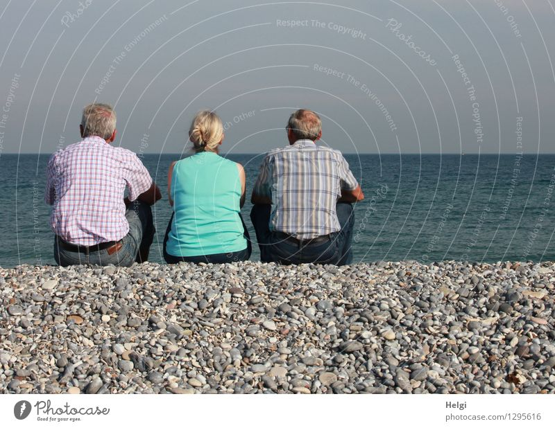 Rear view of a female senior citizen and two seniors sitting on gravel and looking out to sea Vacation & Travel Human being Masculine Feminine Woman Adults Man