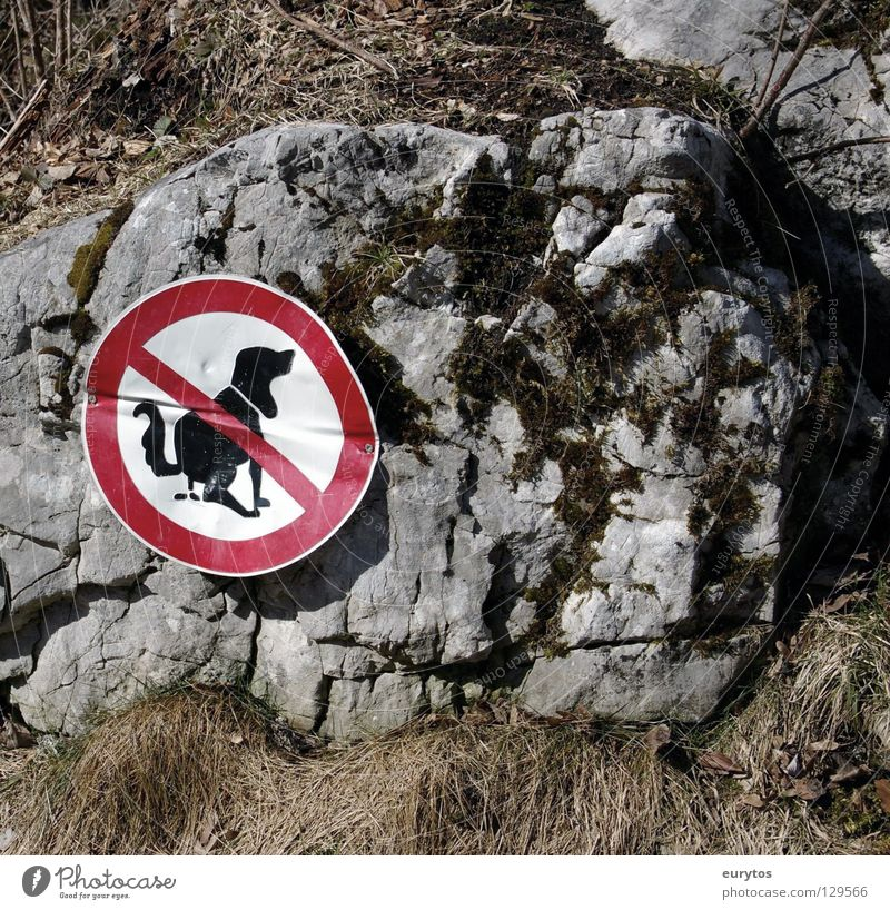 Grass Dog Signs and labeling Rock Feces Mammal Bans Prohibition sign