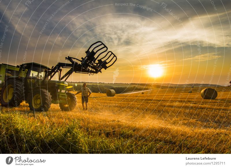 Farmer and his tractor in the hay field Human being Nature Man Summer Sun Landscape Adults Yellow Happy Brown Business Work and employment Masculine Orange Gold