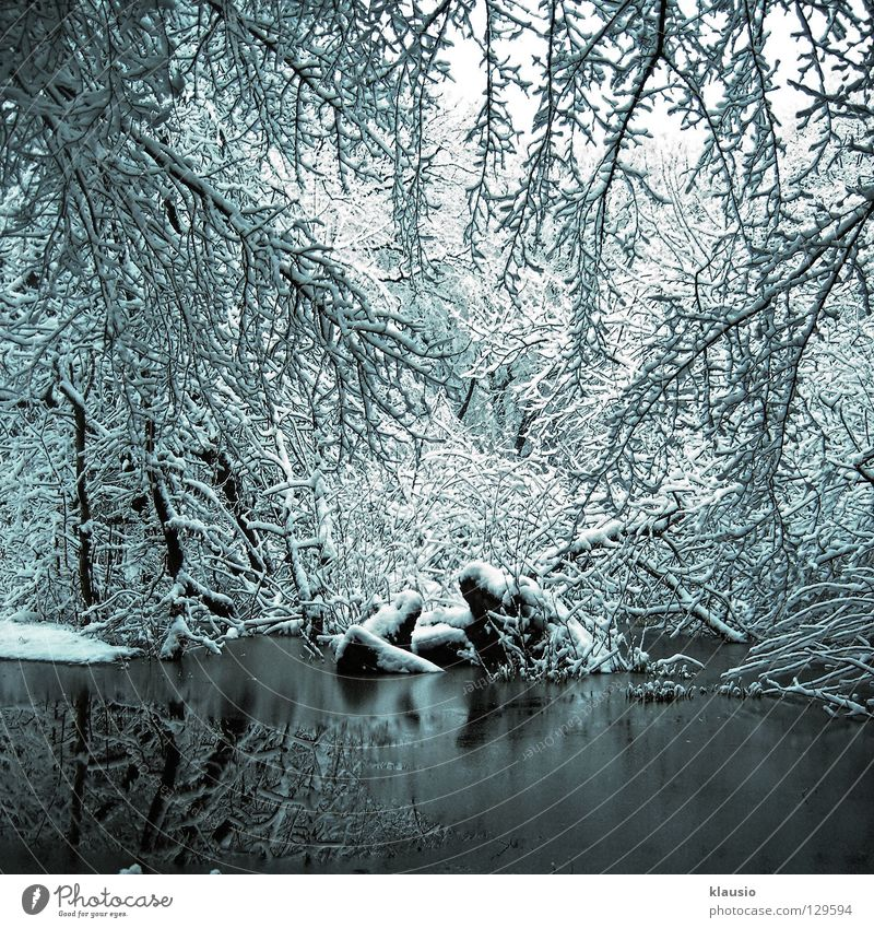 White Winter Cold Snow Lake Ice Frost Frozen