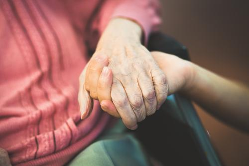 Human being Woman Man Old Hand Life Senior citizen Healthy Family & Relations Together 60 years and older Help Touch Protection Safety Female senior