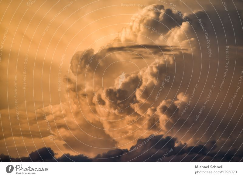 cloud formation Sky Clouds Storm clouds Summer Climate Weather Thunder and lightning Threat Gigantic Large Kitsch Wild Power Might Fear Dangerous
