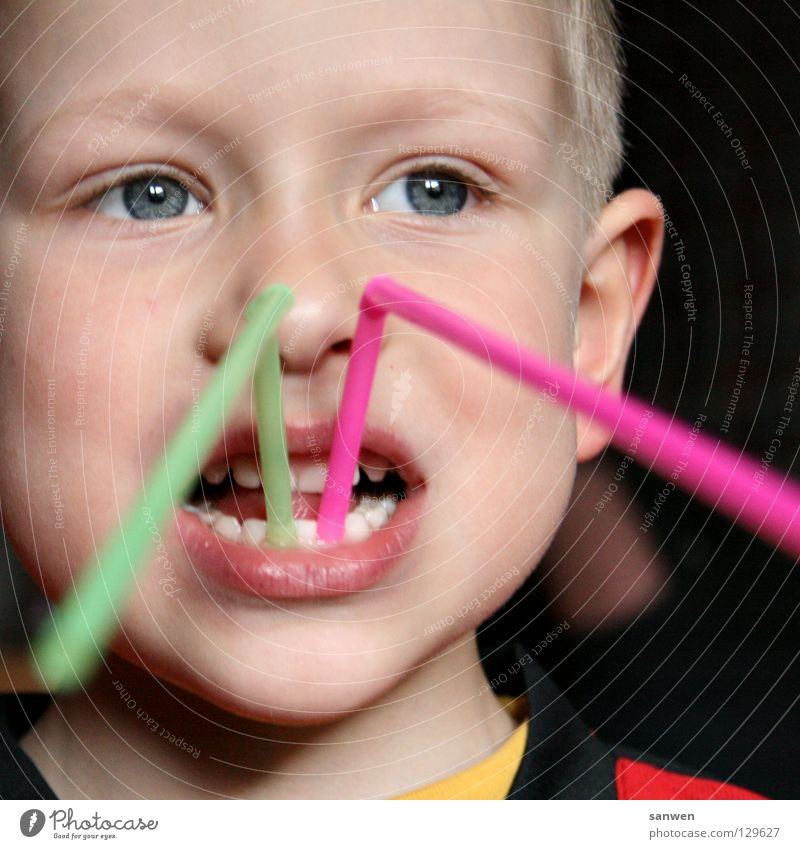 Child Red Joy Face Eyes Boy (child) Mouth Nose Teeth Lips Pain Blade of grass Cheek Tongue Dentist Absurdity