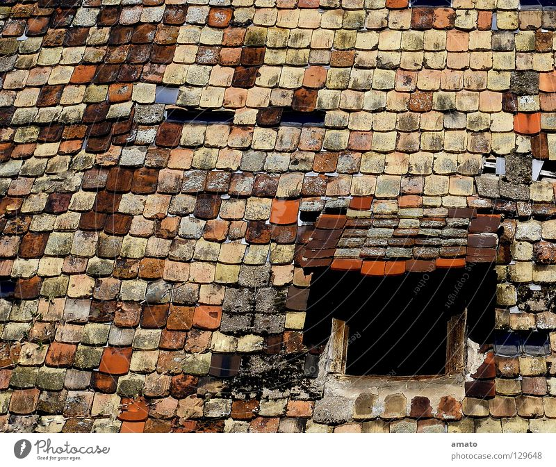 roof crest Roof Roofing tile Mansard Farm Barn Old building Red Brown Black Colour