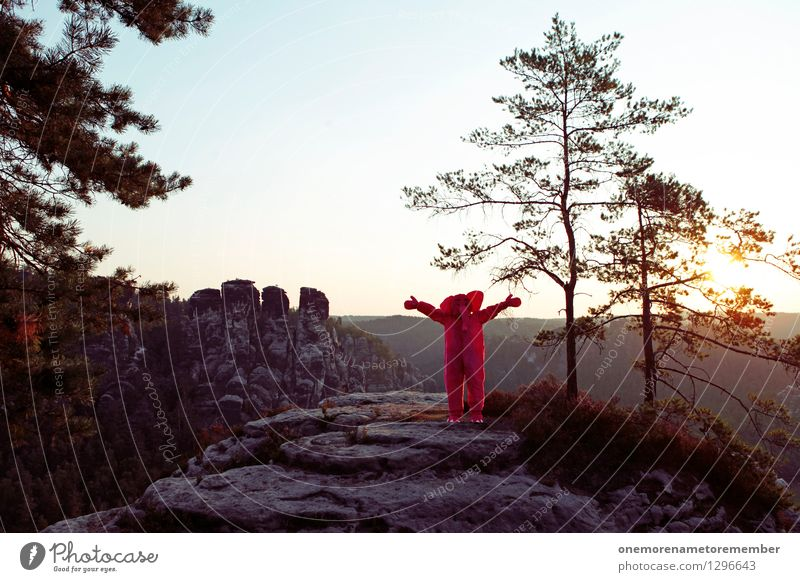 Close to nature Art Work of art Esthetic Elephant Embrace Love Cuddling Rock Saxon Switzerland Sunrise Tree Costume Carnival Beautiful weather Pink Exceptional