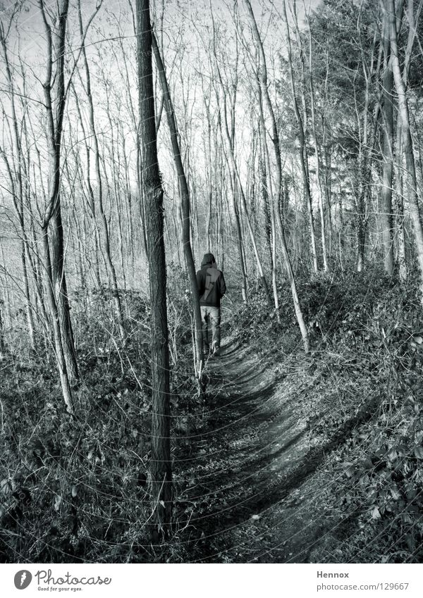 sex offender Gray Forest Tree Pursue Footpath Leaf Branchage Black & white photo Guy Walking cloudy Lanes & trails