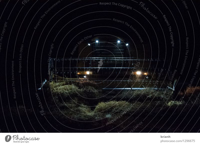 Combine harvester night work Work and employment Farmer Field Agriculture Forestry Environment Landscape Summer Grain Grain harvest starfish Elsmhorn Germany