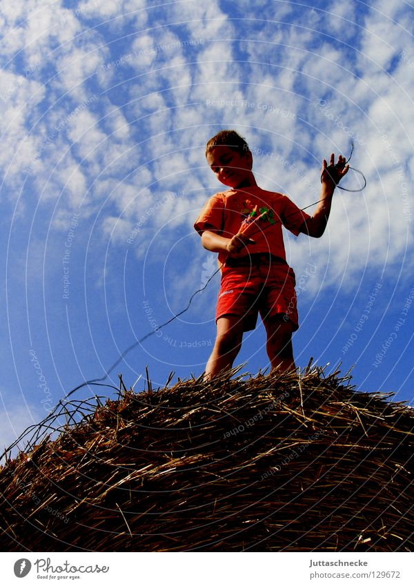 Tie the earth to the sky Boy (child) Child Straw Hay bale Bale of straw Field Clouds Looking Wire Playing Stand Summer Success Nature Sky Blue Above Downward