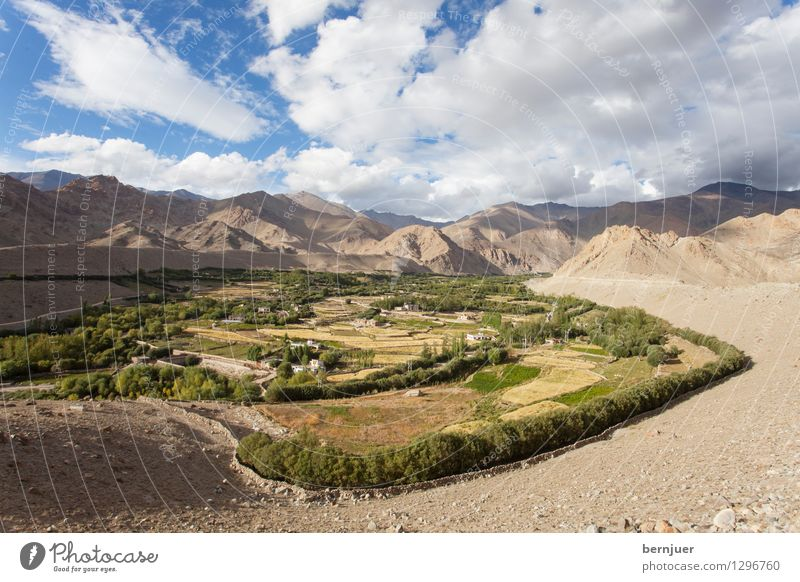 feud Environment Landscape Earth Clouds Summer Beautiful weather Peak Blue Brown Honest Leh Ladakh India Northern India Himalayas Mountain Irrigation