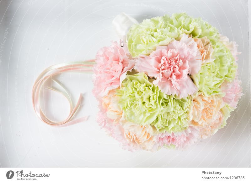 SummerinFlowers Plant Blossom Simple Bright Beautiful Soft Multicoloured Green Orange Pink White Style Bouquet Wedding Still Life Colour photo Studio shot