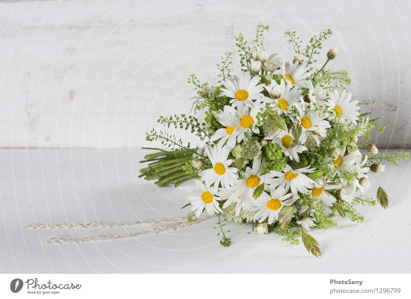 Green Beautiful White Flower Yellow Blossom Natural Bright Wedding Bouquet Vintage Marguerite