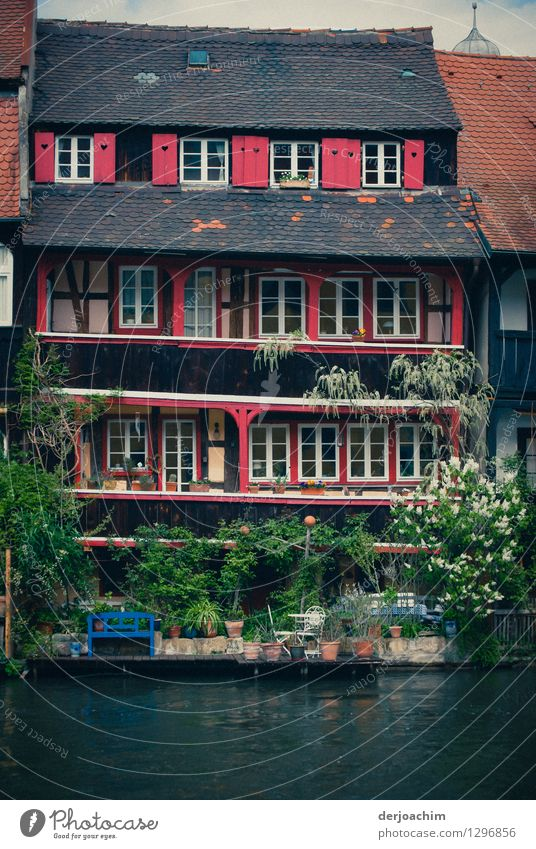 river idyll Design Relaxation Trip Summer Dream house Beautiful weather Foliage plant River bank Bamberg Bavaria Germany Old town Facade Terrace