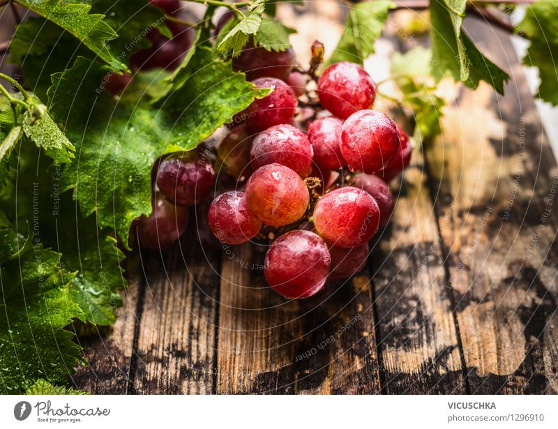 harvest grapes Food Fruit Nutrition Organic produce Vegetarian diet Diet Juice Style Design Healthy Eating Life Garden Table Nature Bunch of grapes Leaf