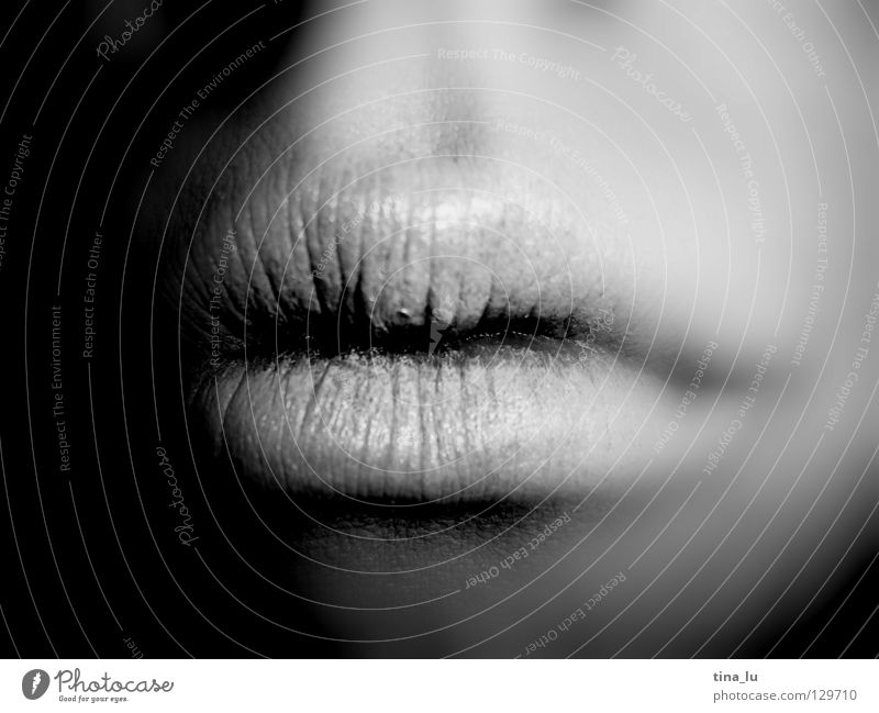 Human being Woman White Black To talk Open Closed Mouth Lips Near Pallid Swing Intimacy Lipstick Lipgloss Corner of the mouth