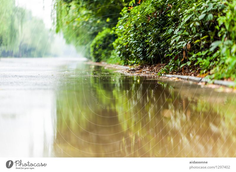 Nature City Environment Street Mysterious Traffic infrastructure Puddle Water reflection