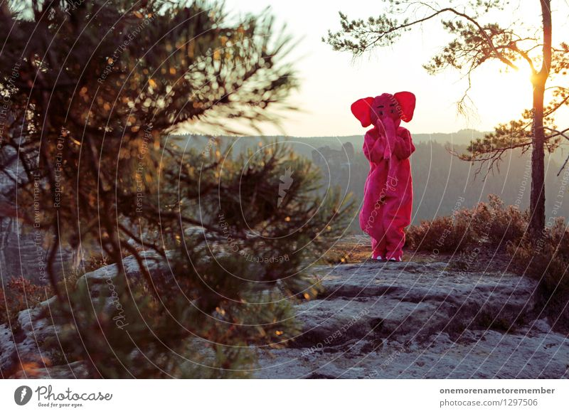 Hihi Art Work of art Esthetic Elephant Pink Ear Forest Saxon Switzerland Sun Absurdity Joy Comical Funster The fun-loving society Carnival costume Disguised