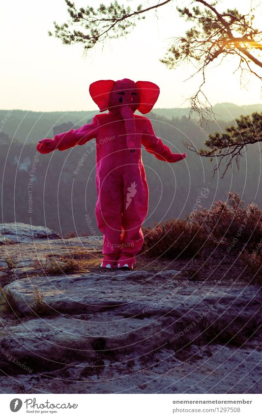 dancing queen Art Work of art Esthetic Elephant Pink Flying Dance Ear Carnival costume Saxon Switzerland Rock Water Joy Dance event Dress up Funny Playing