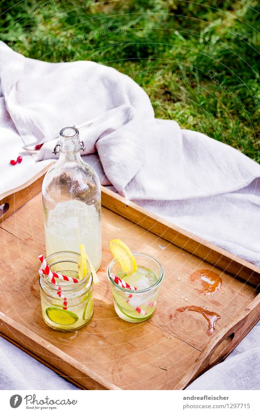 summer picnic Relaxation Trip Freedom Drinking Nature Spring Summer Beautiful weather Garden Park Meadow Esthetic Brown Multicoloured Yellow Green Red White