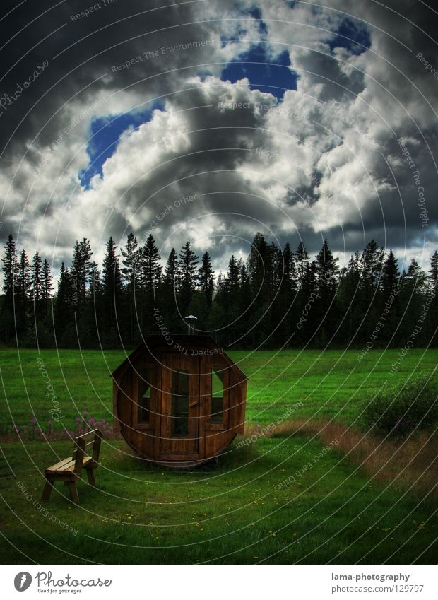 Swedish Sauna Keg Perspire Hot Relaxation Clouds Raincloud Forest Meadow Scandinavia Well-being Vacation & Travel Fairy tale Enchanted forest Nature Healthy