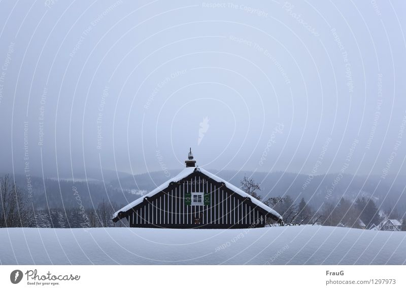 chilling Winter House (Residential Structure) Sky Fog Snow Forest Window Roof Chimney Shutter Wood Heart Climate crouched Colour photo Exterior shot