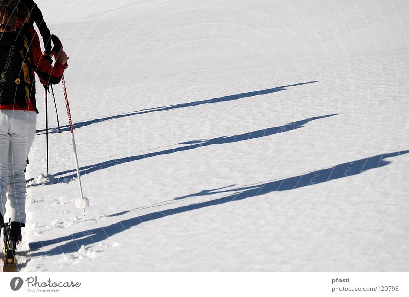 Joy Winter Vacation & Travel Calm Snow Mountain Lanes & trails Warmth Hiking Going Action Skiing Target Leisure and hobbies Physics Skis