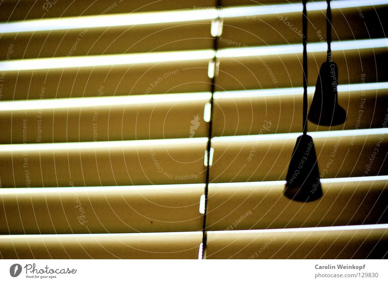 Good morning, dear sorrows. Venetian blinds Screening Morning Wake up Dark Bright Silhouette Exclude Alternating Slumber Arise 2 Yellow Beige Brown Black