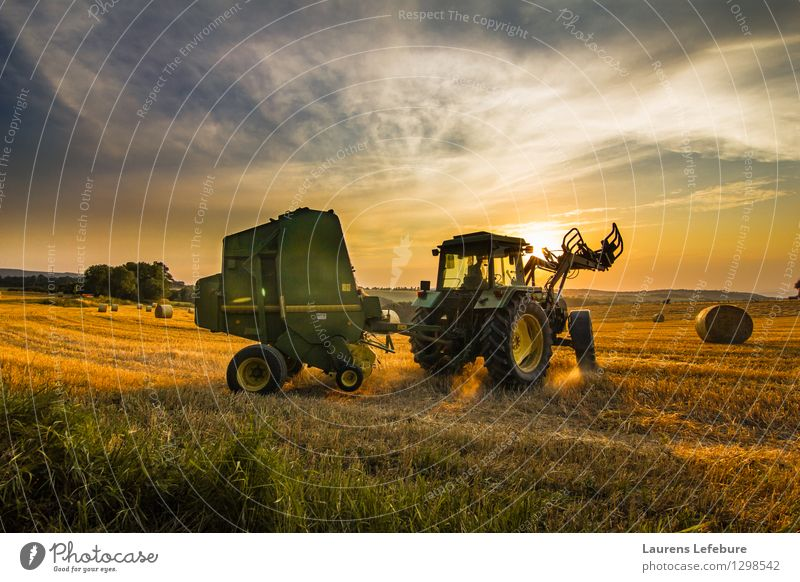 Farmer harvesting hay Harvest Hay Hay bale Agriculture Forestry Tractor 1 Human being 45 - 60 years Adults Landscape Agricultural crop Business Experience