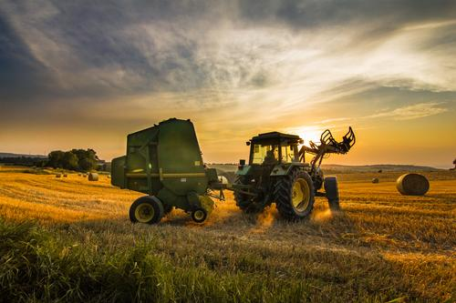 Farmer harvesting hay Human being Sky Nature Blue Green Beautiful Landscape Clouds Adults Yellow Business Work and employment Orange Success 45 - 60 years