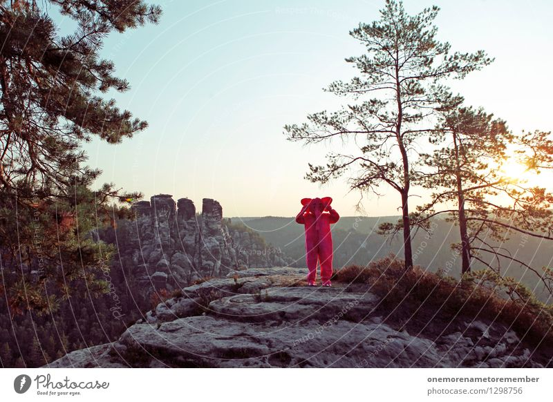 I can't hear you. Art Work of art Esthetic Listening Ear Forest Rock Saxon Switzerland Horizon Sun Stone Carnival costume Disguised Joy Hide Colour photo