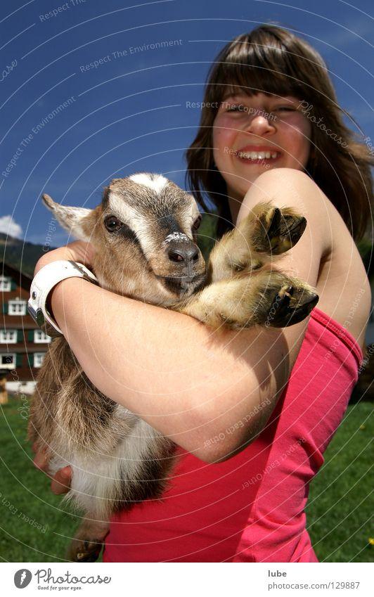 Girl Joy Laughter Agriculture Farmer Goats Thusnelda Heidi