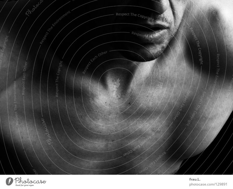 Human being Man Old Face Naked Mouth Masculine Skin Nose Wrinkle 50 plus Thin Chest Facial hair Shoulder Neck