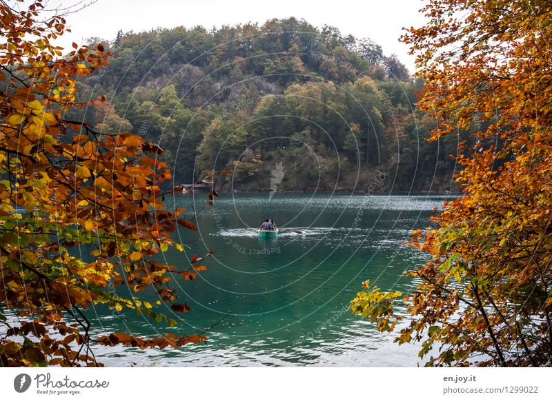 Human being Vacation & Travel Green Relaxation Landscape Leaf Calm Forest Mountain Yellow Autumn Lake Together Friendship Leisure and hobbies Tourism