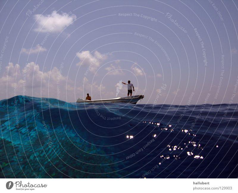 Water Ocean Dive Underwater photo Maldives Aquatics Reef Snorkeling