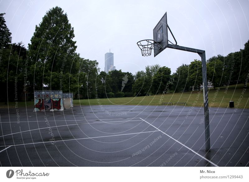 basket size Q Athletic Fitness Leisure and hobbies Sports Ball sports Sporting Complex Halfpipe Tree Meadow Town Park Gray Basketball Basketball basket