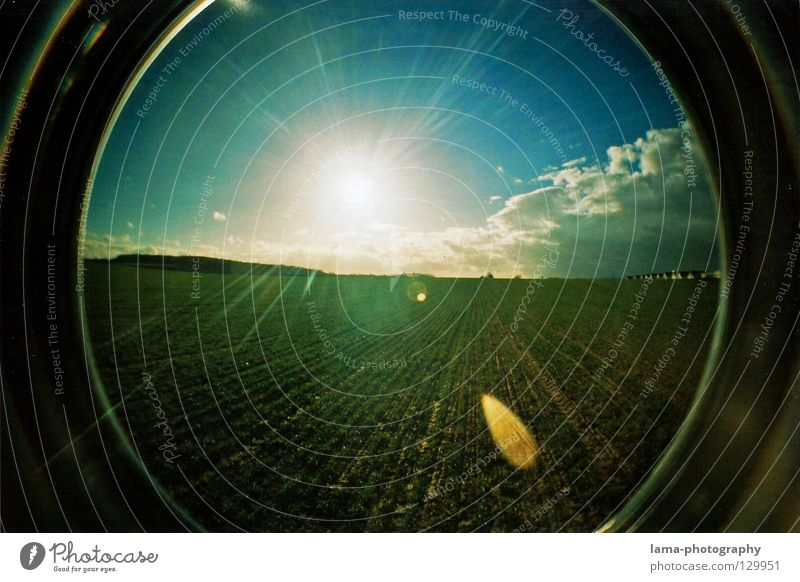 blinded by the light Sun Sunbeam Summer Field Agriculture Dazzle Light Back-light Fisheye Round Snapshot Wide angle Analog Nature Panorama (View) Sky Blue sky