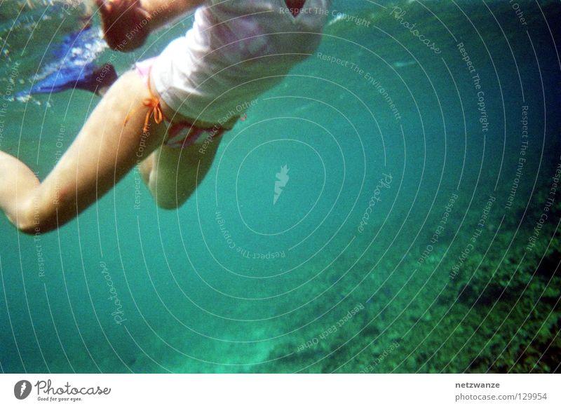 like a sea turtle Snorkeling Seychelles Nixie (Water Spirit) Aquatics Underwater photo Scan Kodak disposable cam iso 800