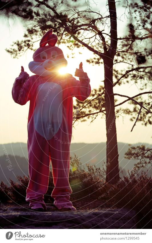 Nature Joy Forest Art Exceptional Rock Pink Esthetic Carnival Environmental protection Positive Hare & Rabbit & Bunny Optimism Work of art Carnival costume