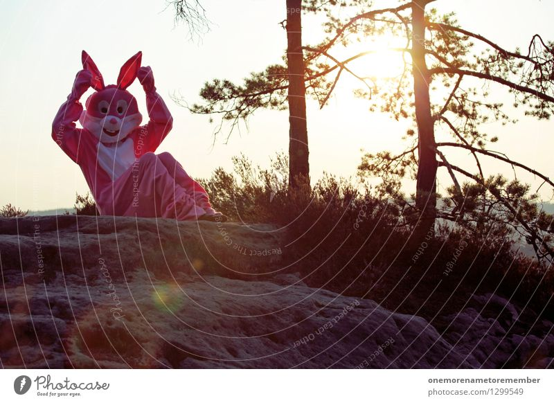 Joy Art Rock Pink Esthetic Ear Listening Hare & Rabbit & Bunny Surrealism Work of art Costume Carnival costume Comical Absurdity Funster Saxon Switzerland